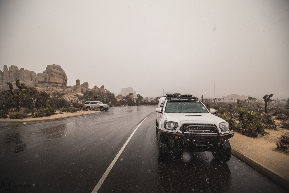 Yeah...snow, in Joshua Tree.  As I said on Facebook, apparently it's really rare for it to snow in JT, so I'm counting it as a win.