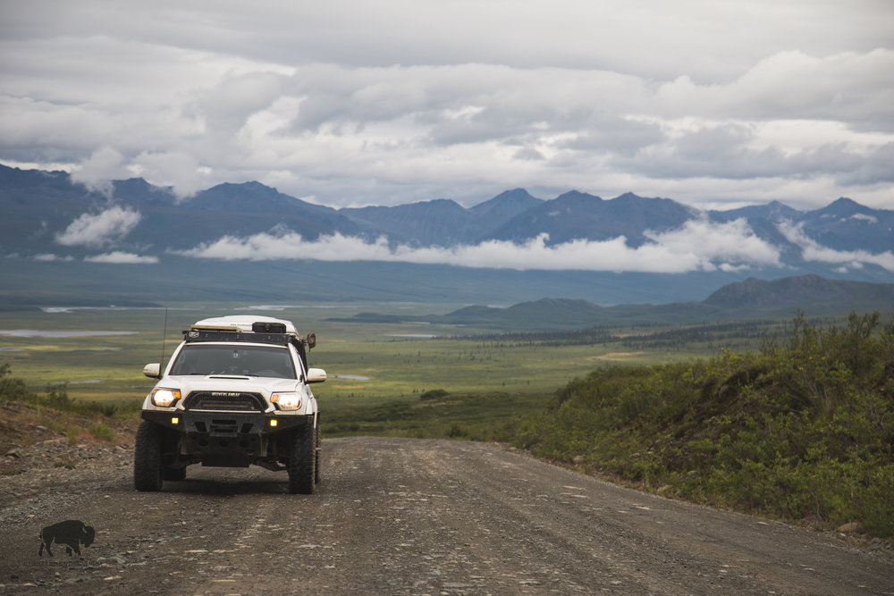 Driving the Denali Highway was a special experience though as things seem to go when I travel up North, too short.