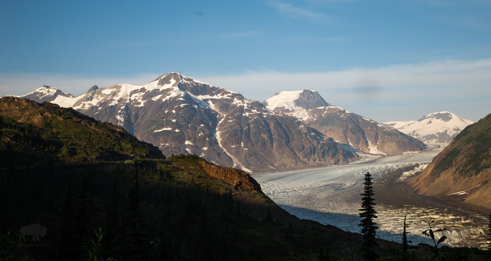 Salmon Glacier-2695.jpg