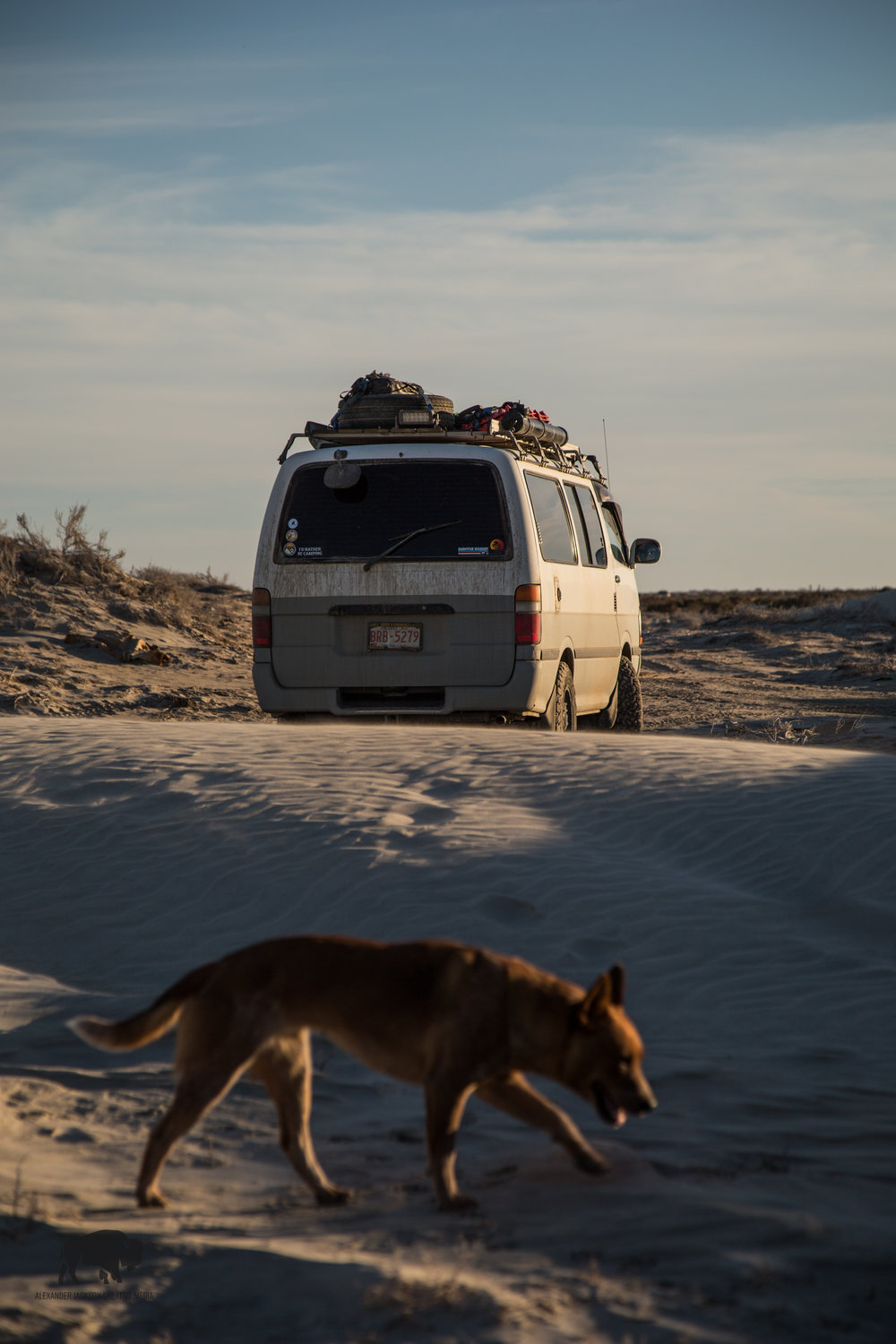 Hiding in the sand dunes outside of Guerrero Negro for the night. #Willowapproved