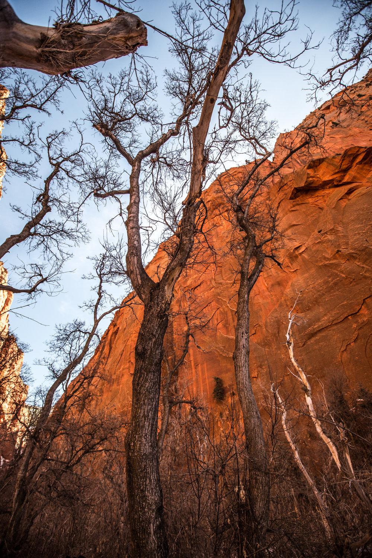 Kolob Canyon, Utah.