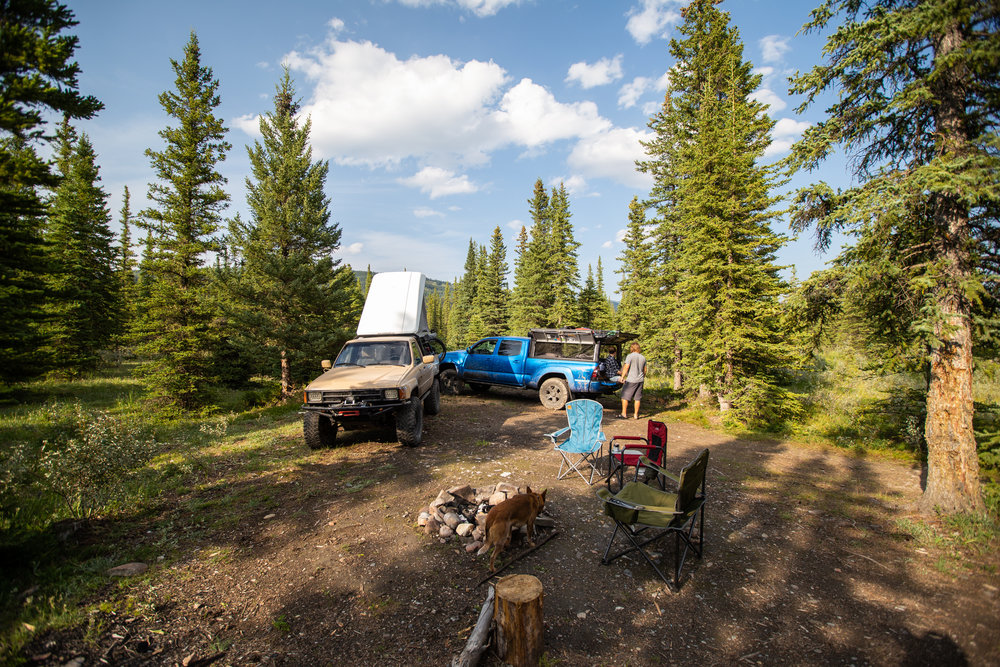 Before exiting the mountains I met up with my friend Alec and Erin for a little camping and proceeded to travel a large portion of the 40 which is a forestry trunk road paralleling the Rockies as far south as Crowsnest Pass and as far North as Grand Prairie.
