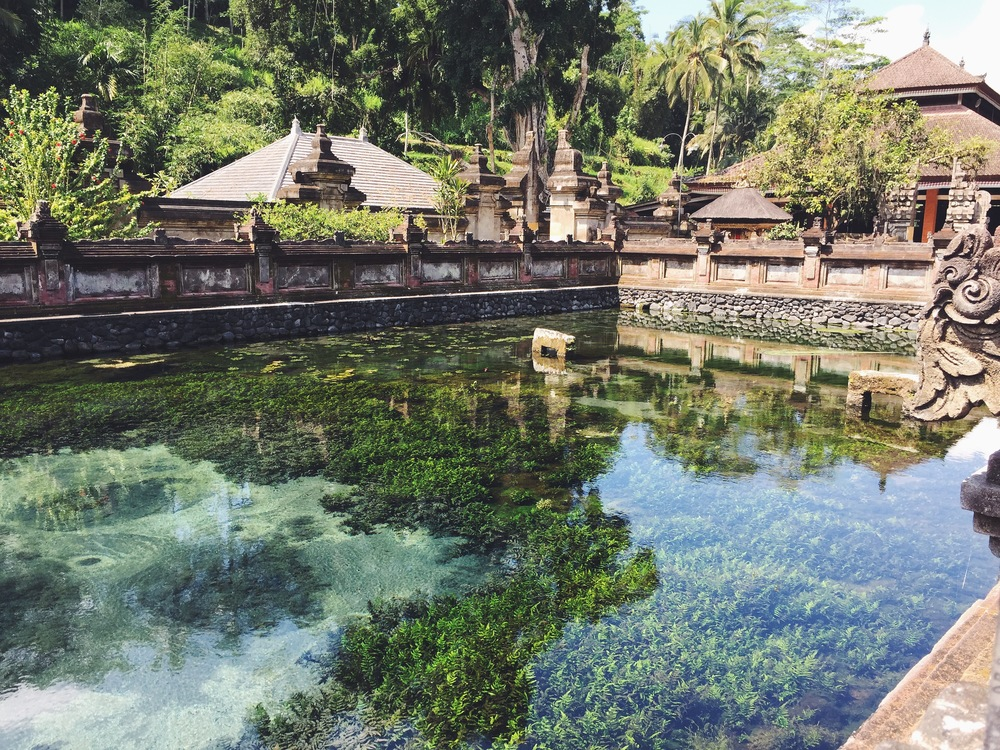 This temple has a natural spring inside it.  Around the outside are spouts that let the water, which is considered holy and very cleansing, flow into separate pools.  In these pools people line up submerged themselves under each spouts literally be glanced by the water and by the Gods.