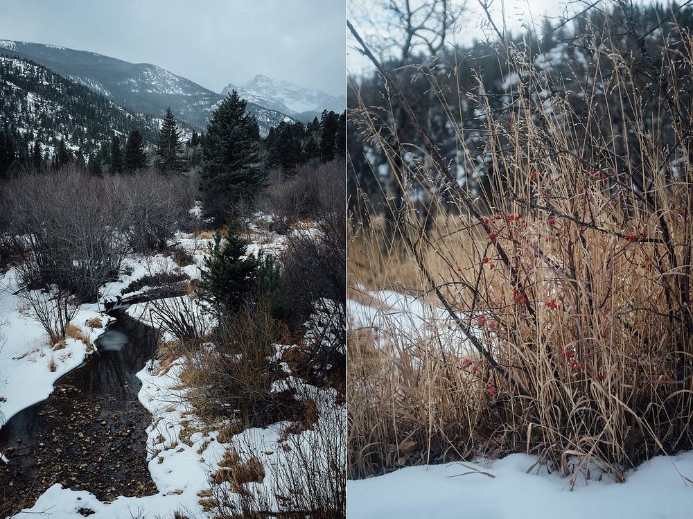 2014-12-16_0009.jpg
