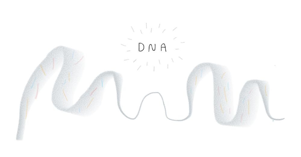 DNA illustration.