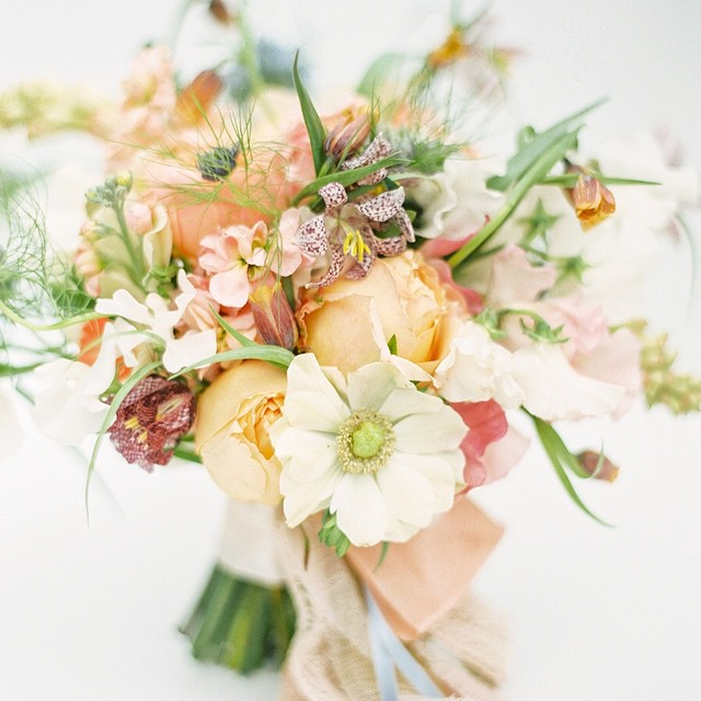 Holly Heider Chapple Flowers (Image: Jodi Miller Photography)