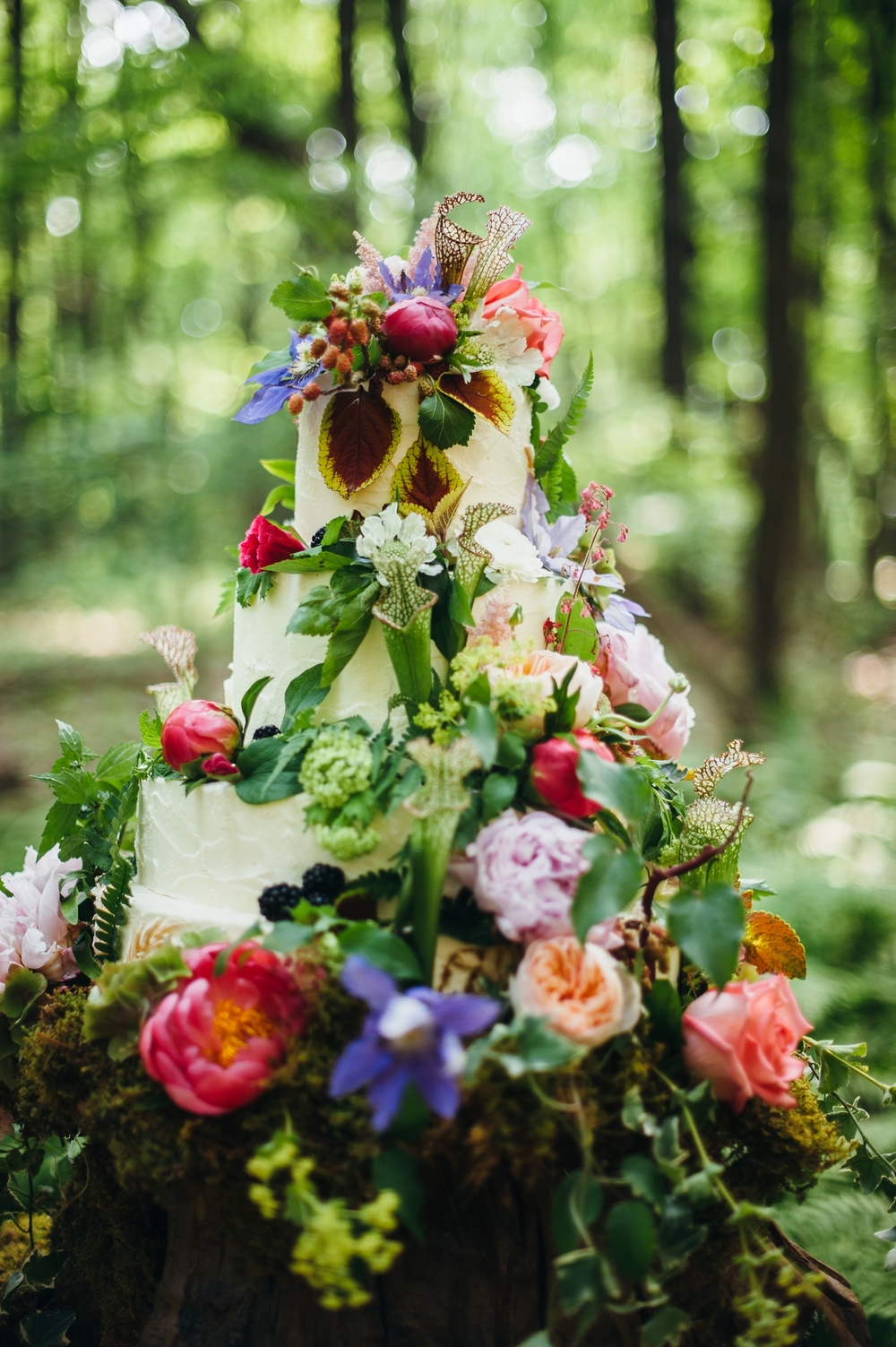Mt. Lebanon Floral    Image courtesy of  Veronica Varos Photography