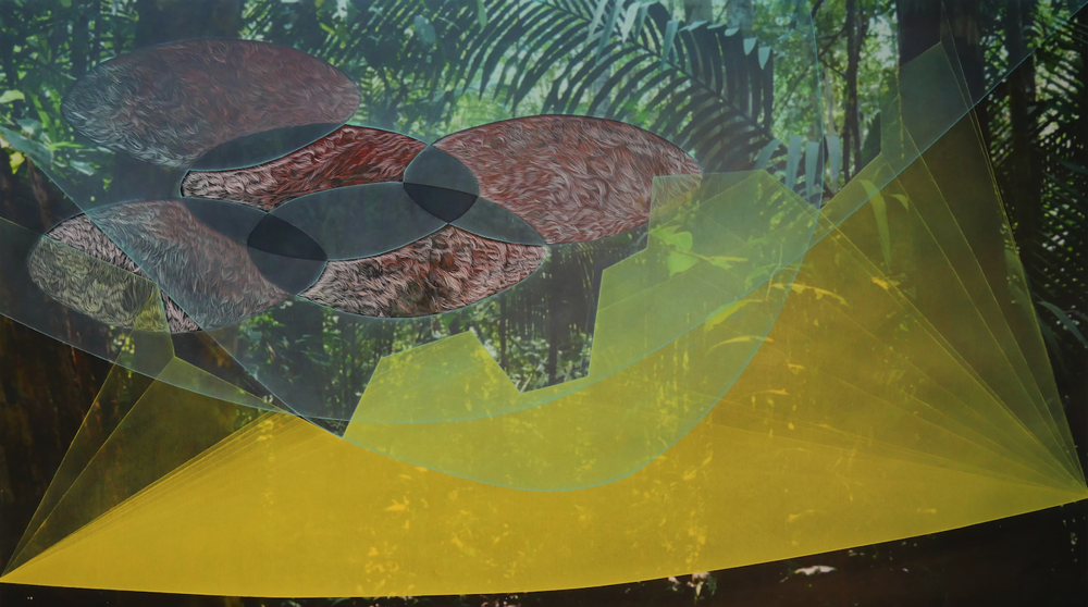 """Green Scotoma.  Mixed media on paper (digital photograph, oil and ink), 17"""" x 30"""", 2016. Photos taken at Adolpho Ducke Rainforest Reserve, Manaus, Brazil"""