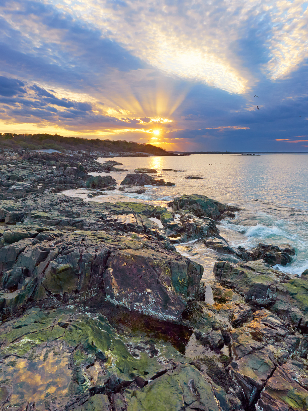 Biddeford Point Sunset #1