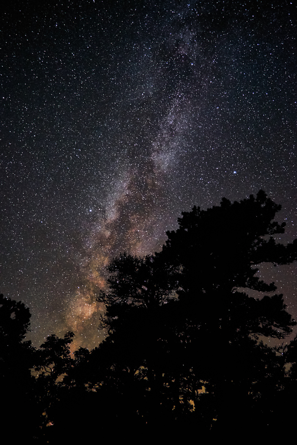 Milky Way Silhouette