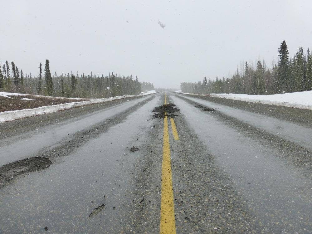 It's spring, flowers and trees are blooming and so is the Alaska Highway. The Klondike was worse - they had even stripped large sections and were re-paving them because of the thawing damage.