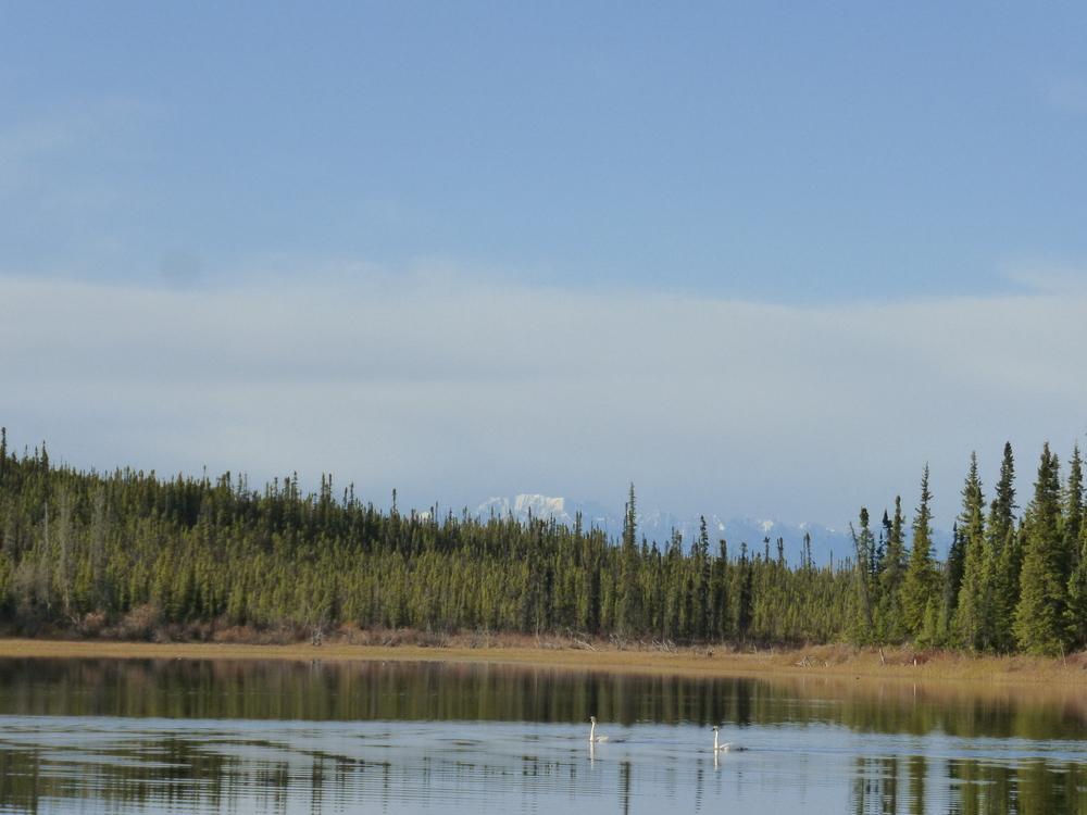 33. Yukon