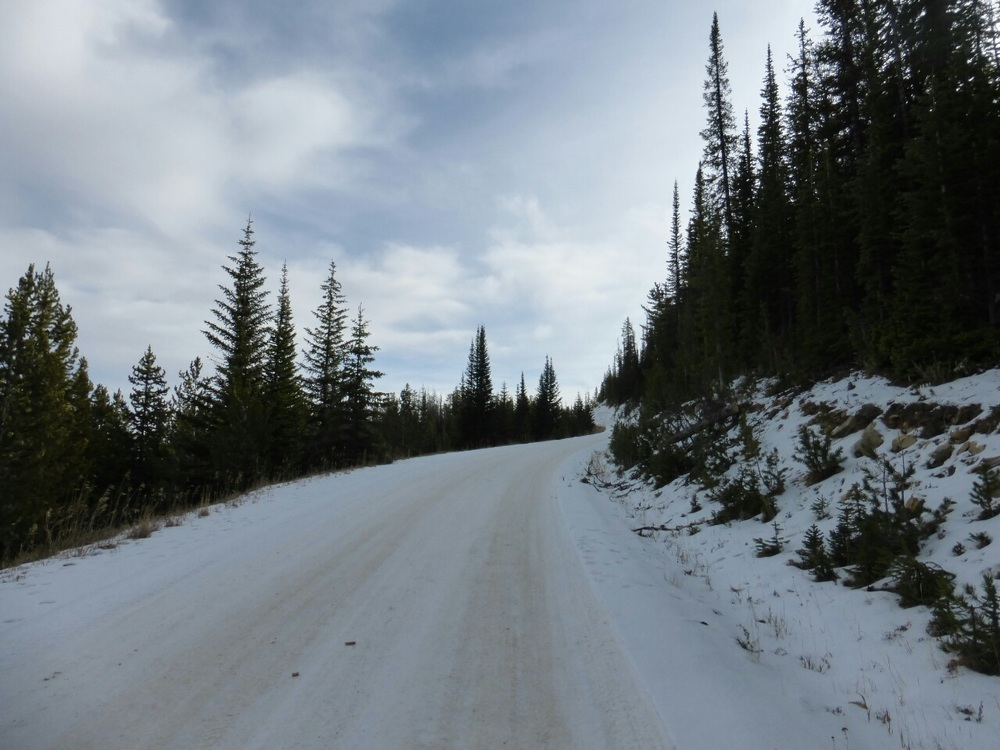 Union Pass road: the shady spots had snow but for the most part it was not a problem.