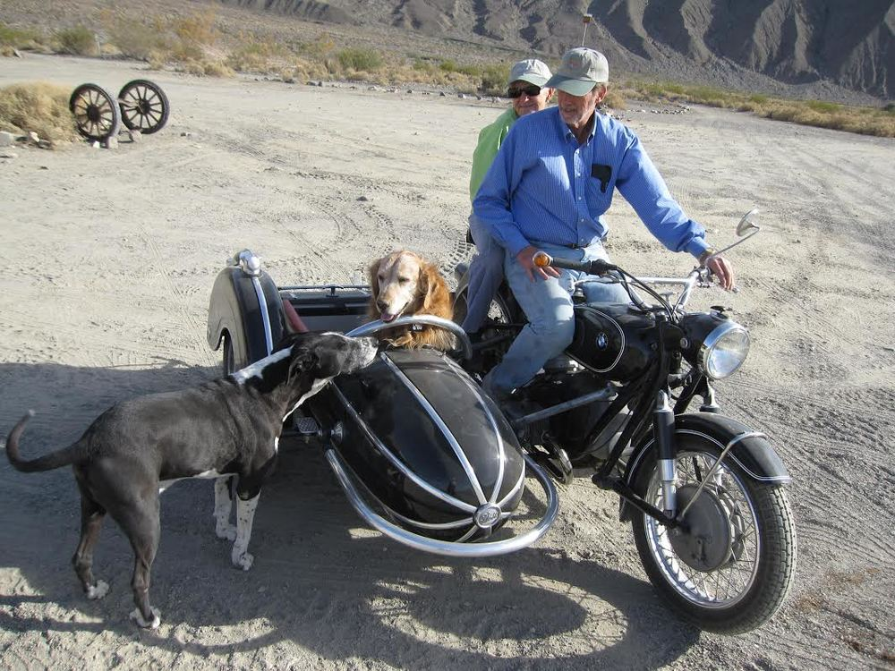 Rusty the motorcycle dog & friends. Photo: Bob