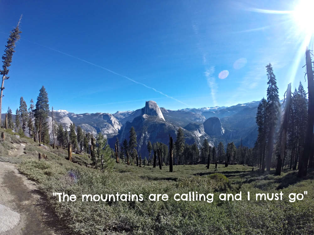 John Muir - a naturalist, an author and an advocate of wilderness preservation.