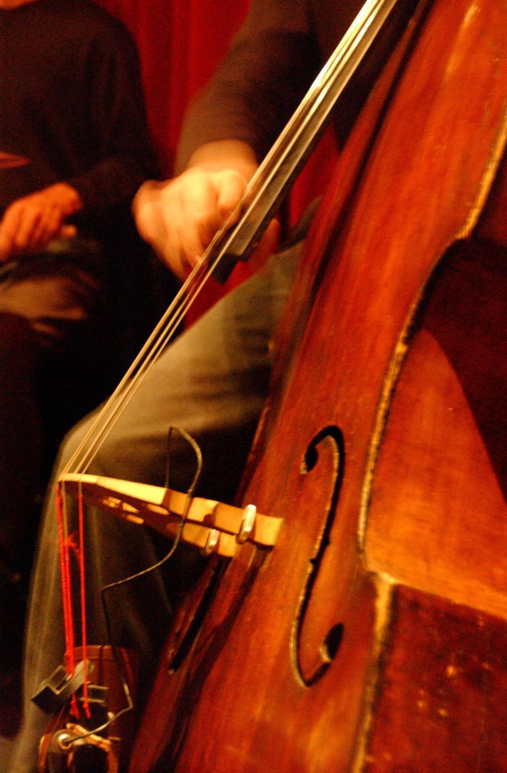 Bass A_0087.JPG