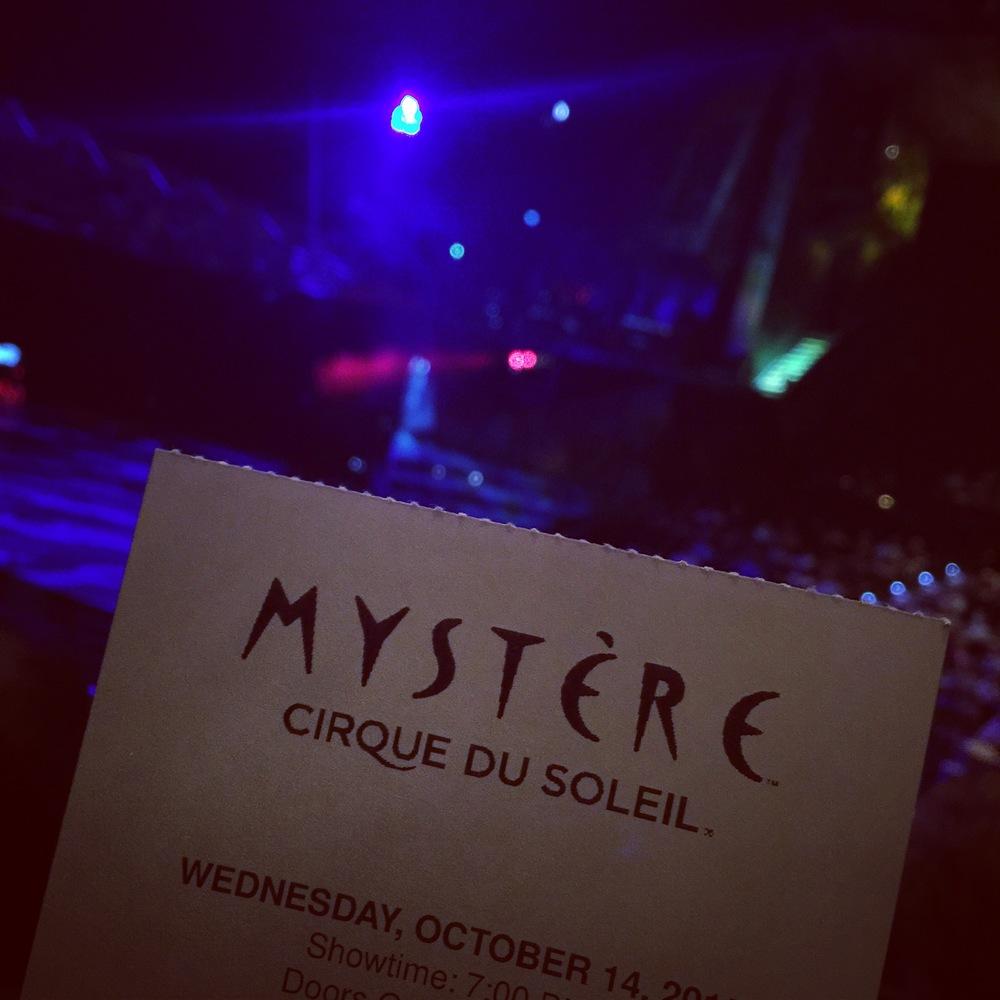 Jason's cirque du soleil ticket.JPG