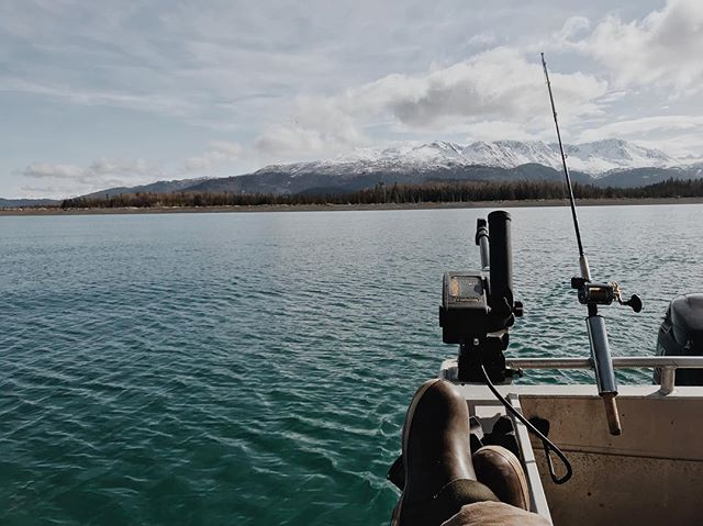 These views     My dads been trying to convince me to run a winter charter boat out of Homer with him and quite frankly I'm running out of reasons to say no.