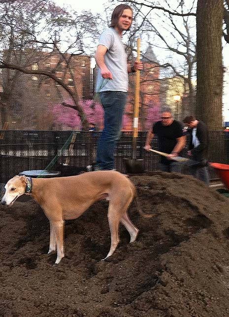 Charlie (Benjamin) and Nimbus prepare to move 2 truck loads of new dirt into the gardens
