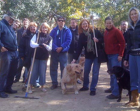 The gang in the large dog run
