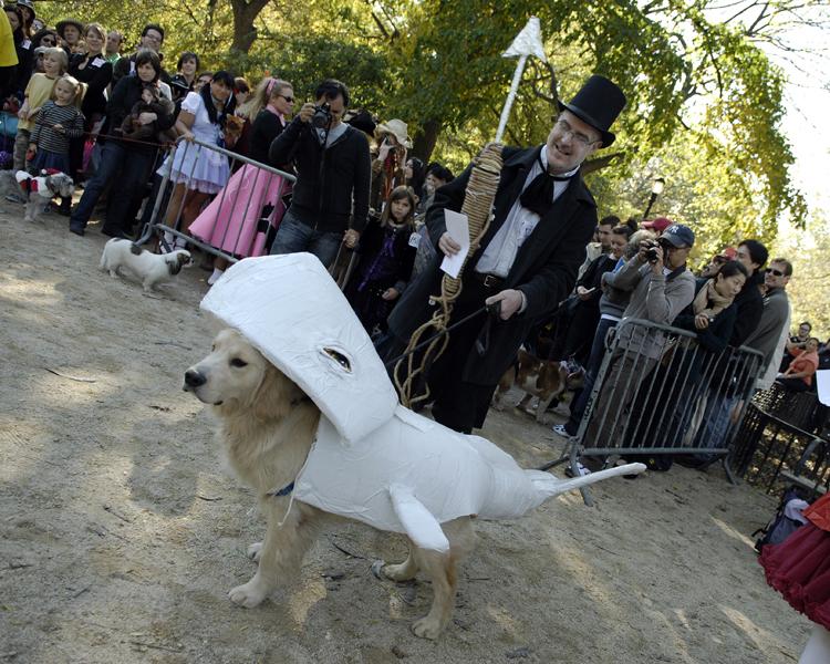 Halloween Dog Parade - Kreizel 196  .jpg