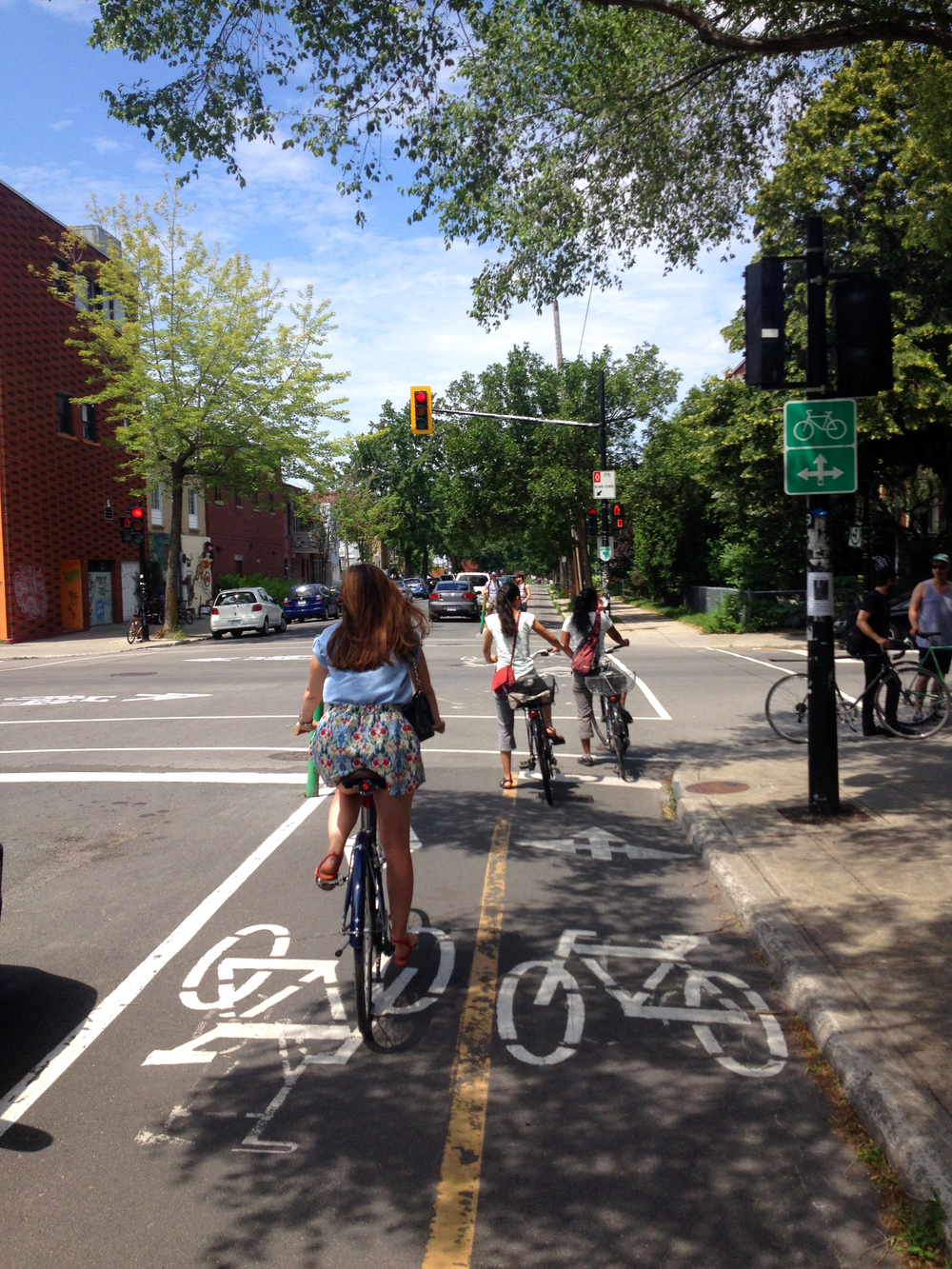 2014 Bike Lanes2.jpg