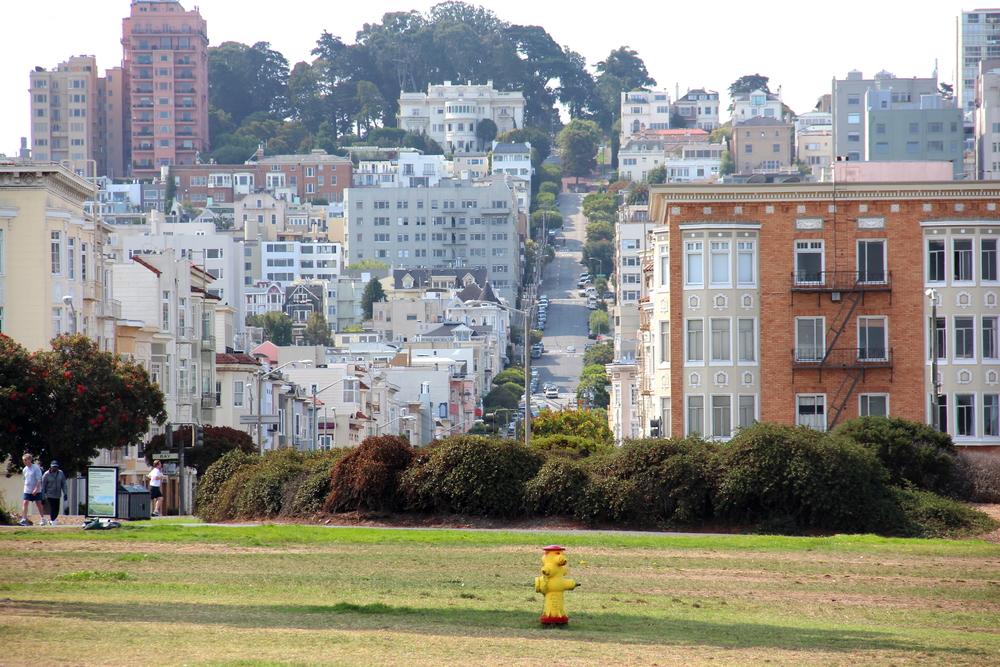 2014 SF Hills.JPG