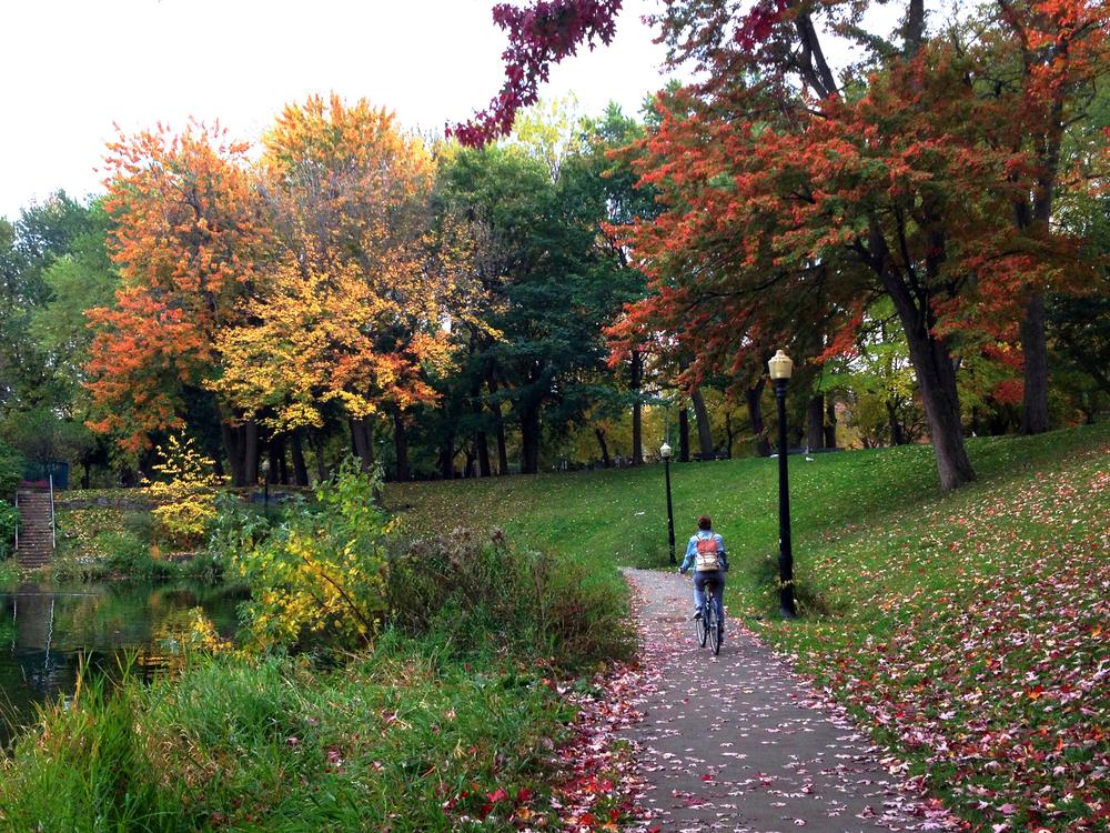 Parc La Fontaine.