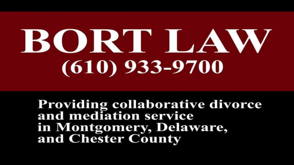 bort law logo.jpg