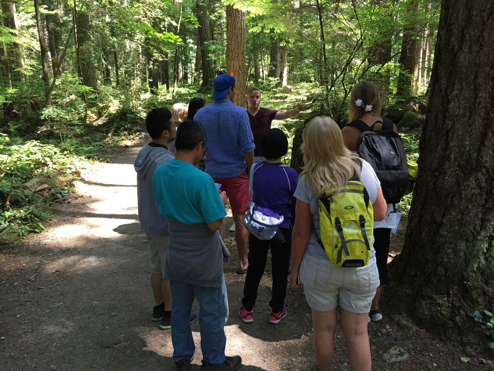 Foraging Tours Vancouver Langley Campbell Valley Regional Park