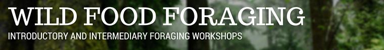 Foraging Workshops