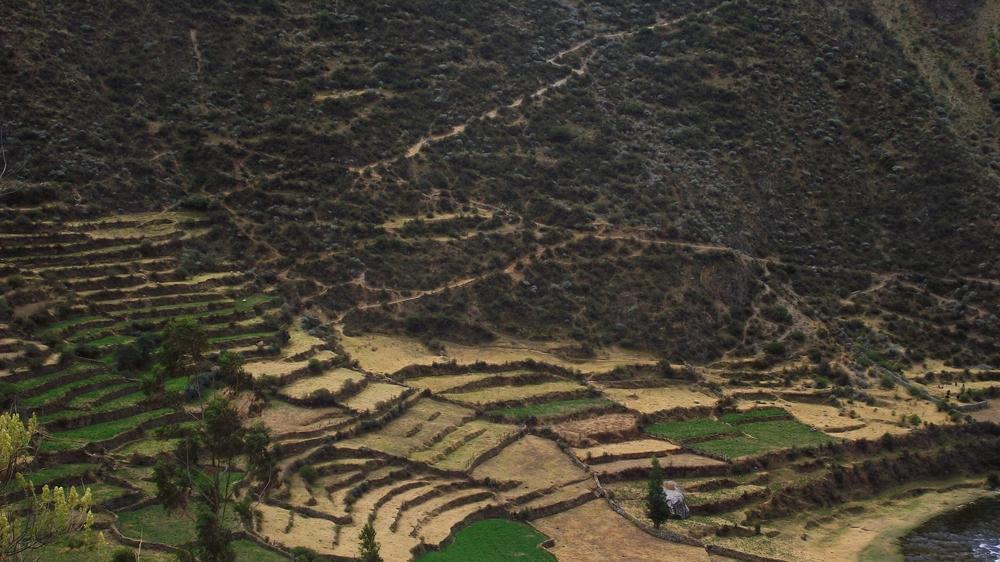 Traditional terraces in rural Peru (Photo Mullapata)