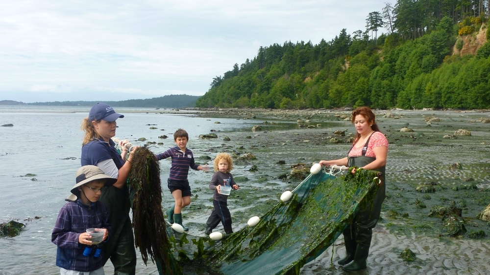 Kids taking part in seashore activities (Photo Young Naturalists of BC)