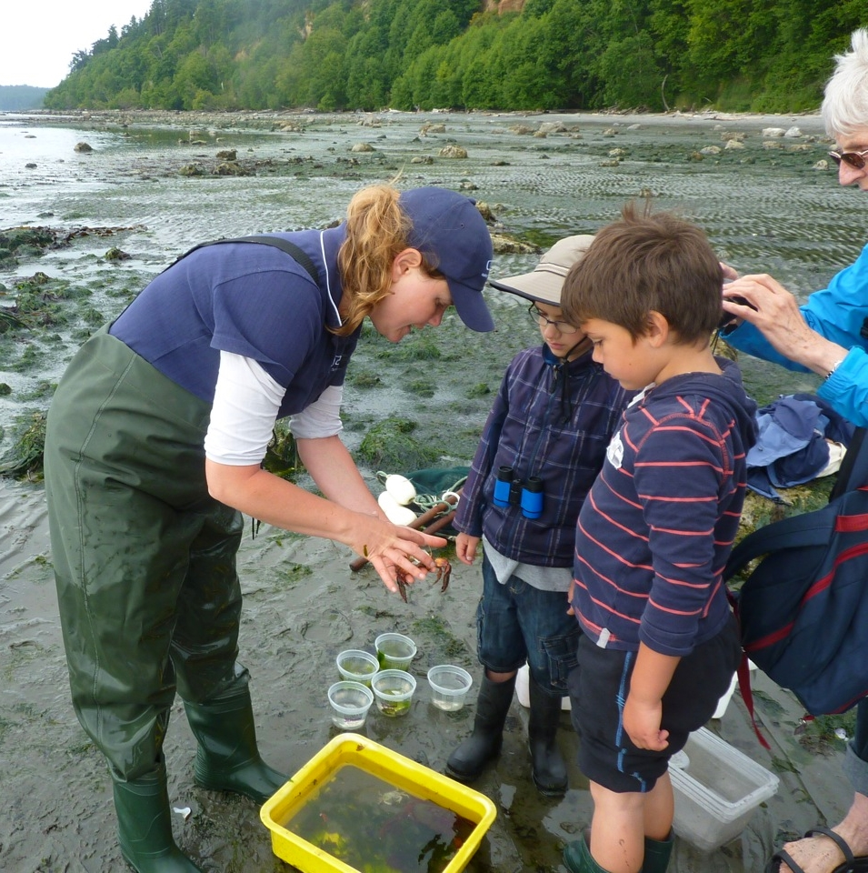 Victoria's Young Naturalists' Club explores the waterfront on a seining expedition (Photo Young Naturalists of BC)