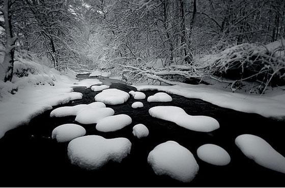 New-Snow.jpg