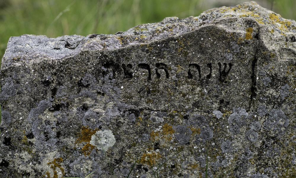 17 Jewish tombstone, Ozeran.jpg