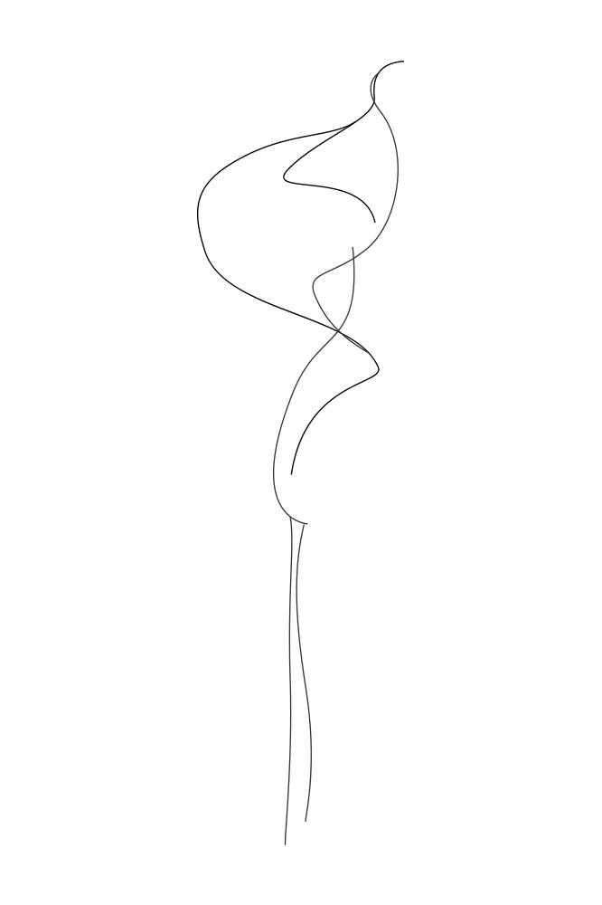 flora-lines-2.png