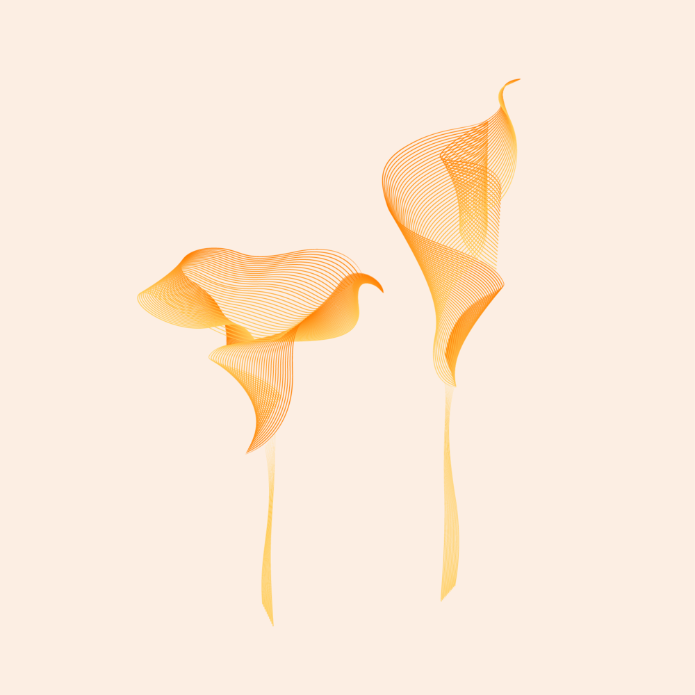 flora-04.png