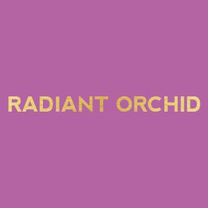 wine themed bridal shower color palette - radiant orchid