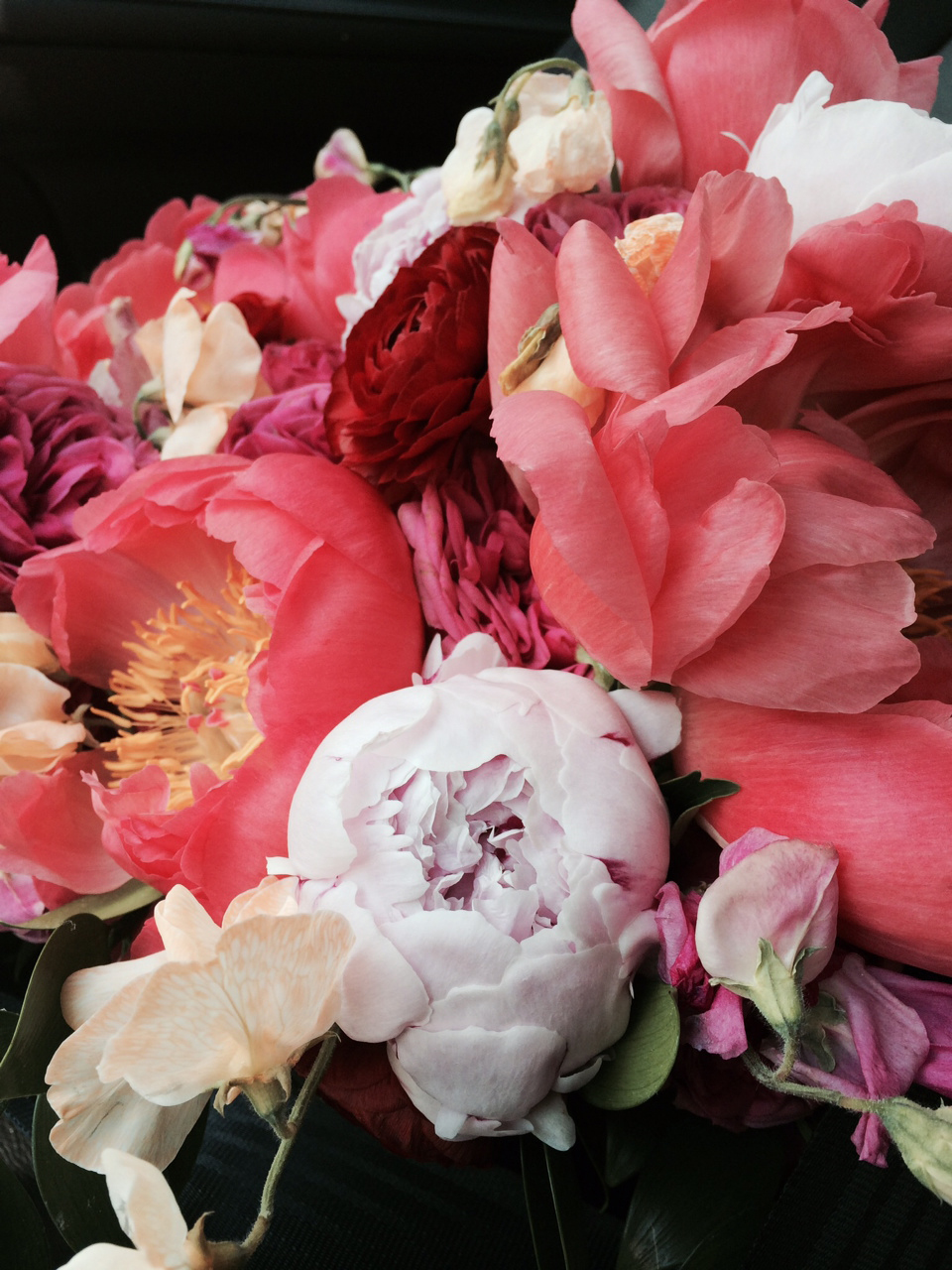 Coral peonies were the perfect blooms for our vibrant summer color palette.