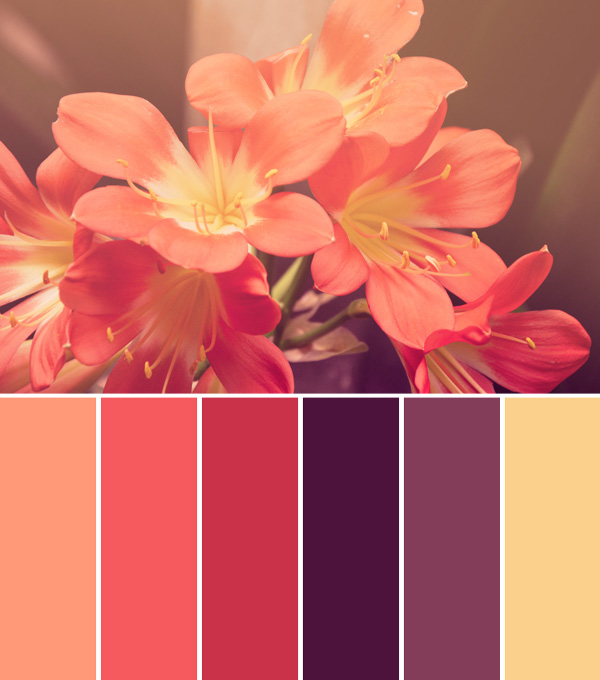 Aug 2, 2014 Palettes, Pink, Purple, Yellow coral, purple, yellow, wedding  color palete, red, red and purple, flower color palette Gabrielle Green 1  Comment