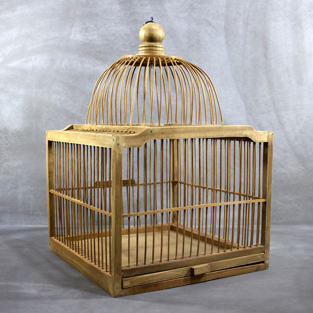 wedding card holder birdcage for rent.jpg