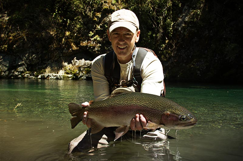 A stunning Taupo Rainbow Trout