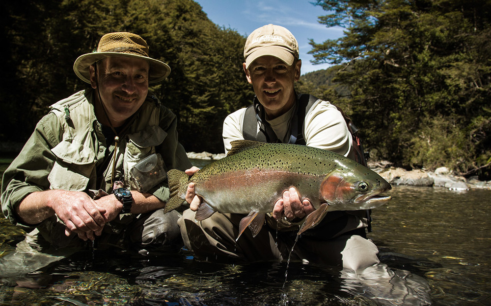 Beautiful NZ Rainbow Trout caught fly fishing