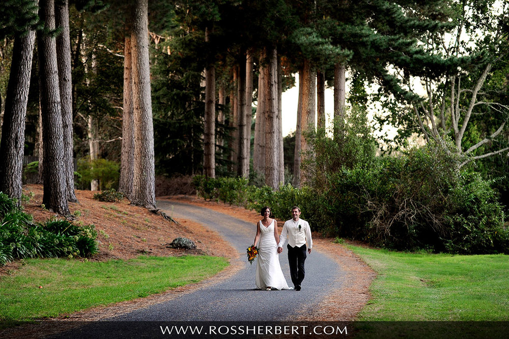 Wedding photo of couple walking amongst the trees at Tongariro Lodge