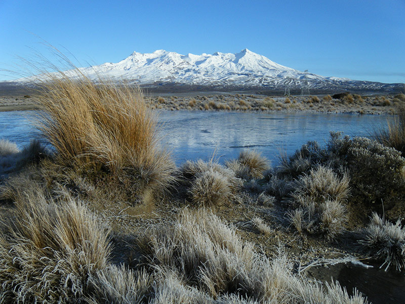 Mt Ruapehu in Tongariro National Park