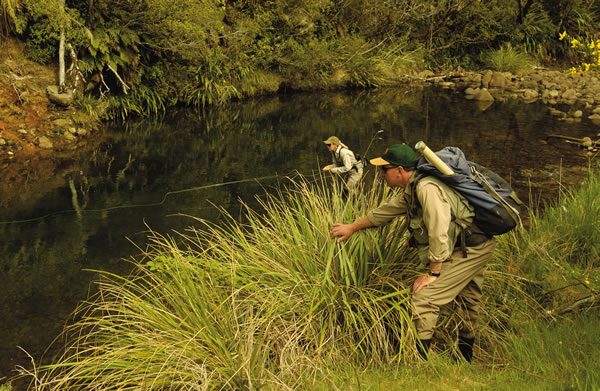 Fly Fishing 1   Download
