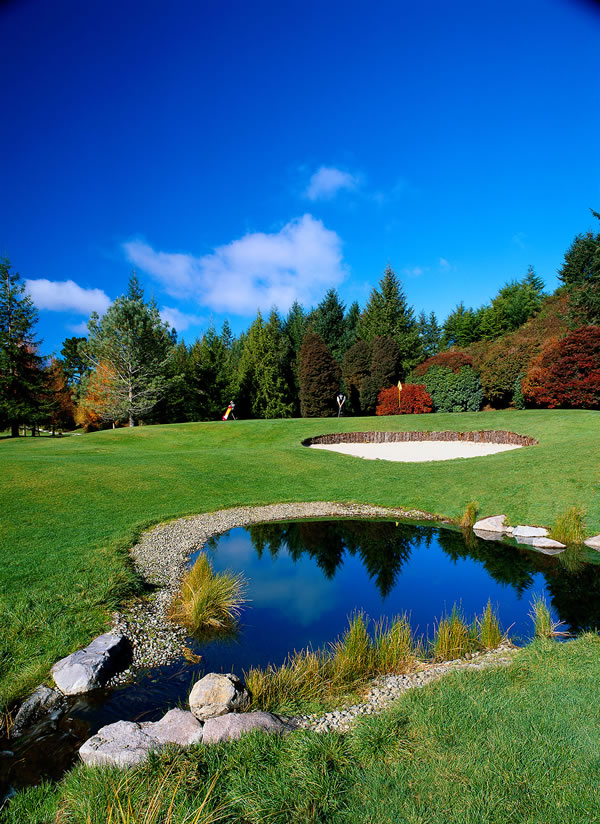 International Golf Courses    Download