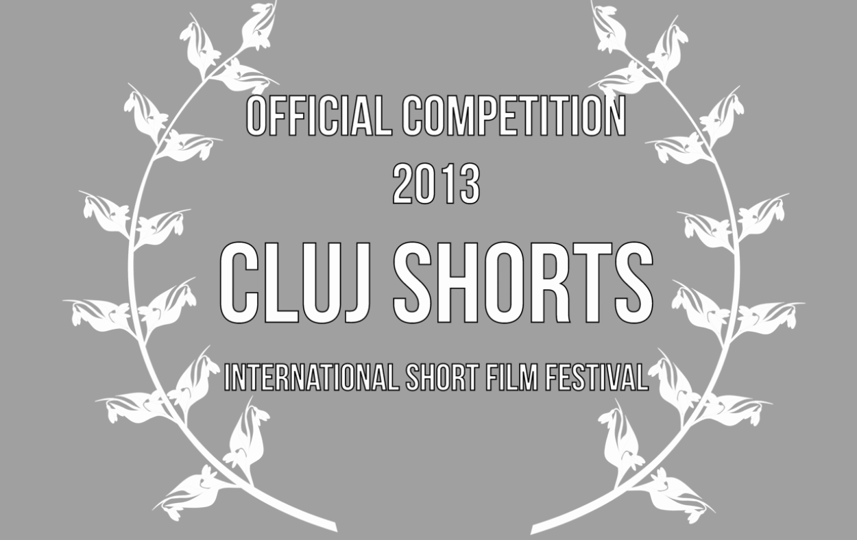 the end   was accepted into the Official Competition.   We are now in the running for one of these awards:   • Cluj Shorts Trophy - Best Short Film  • Best Director   • Best Picture  • The Audience Award    http://clujshorts.ro/official-competition/