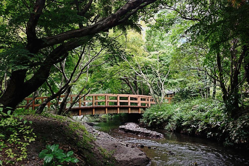 A bridge near Lake Kinrin.